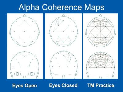 EEG alpha coherence map transcendental meditation